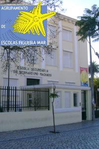 Oferta vocacional do AE Figueira Mar